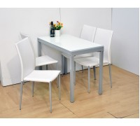 Shelia Dining Table with 4pcs chairs (Extendable Square)